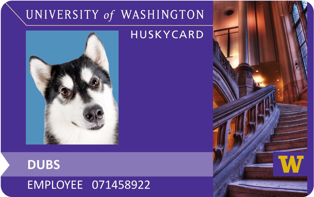 Husky Card/Plotting