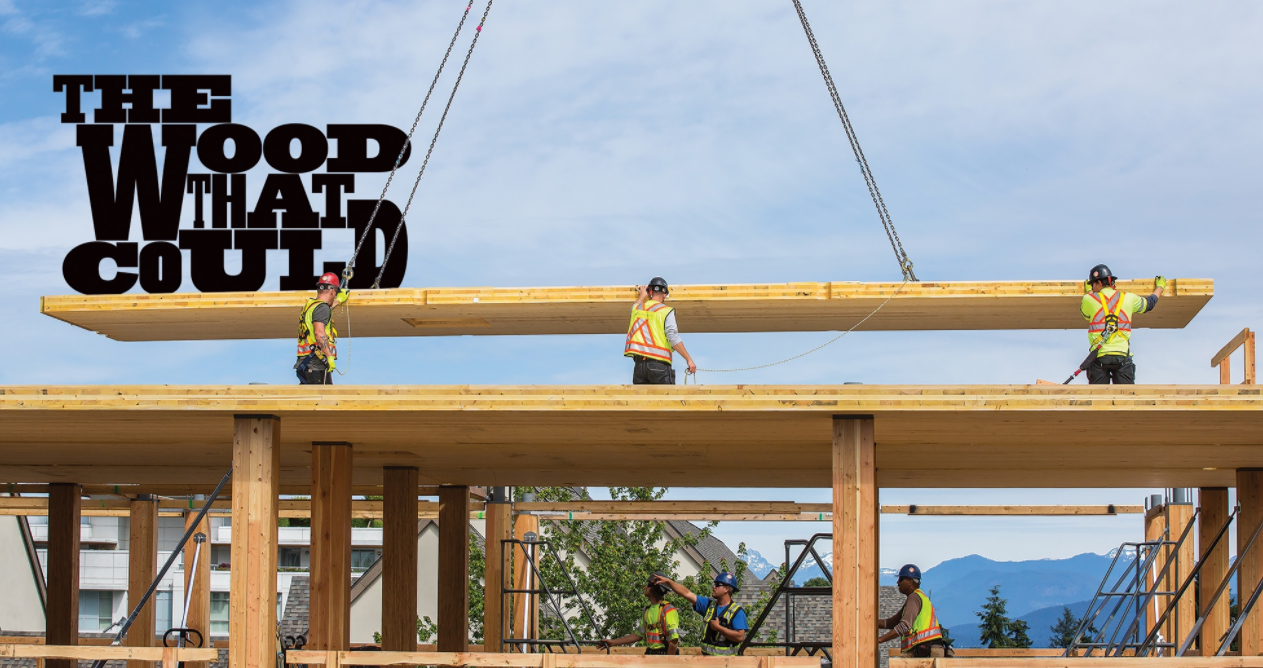 Construction workers move timber on job site